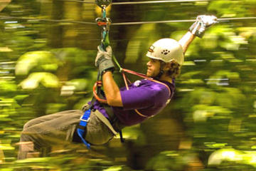 Jamaica Sky Explorer and Optional Zipline Tour from Montego Bay