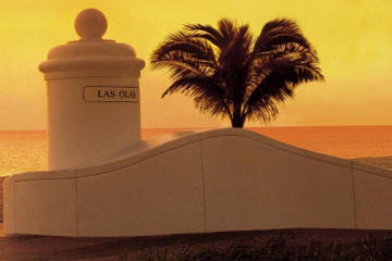 Fort Lauderdale Shore Excursion: Pre- or Post-Cruise Private Miami City Tour