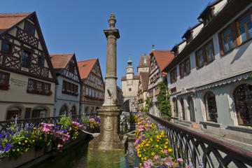 Heidelberg and Rothenburg Day Trip from Frankfurt