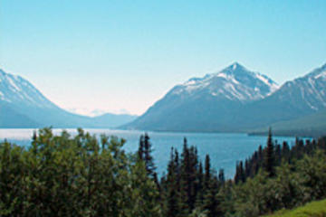 Skagway Shore Excursion: Half-Day Tour to the Yukon Border