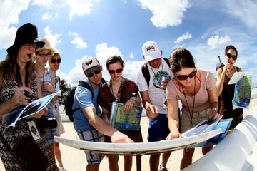 Amazing Cozumel Race: Small-Group Tour and Scavenger Hunt