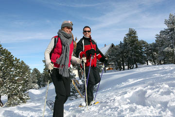 Private Tour: Mt Hood Snowshoe Adventure from Portland