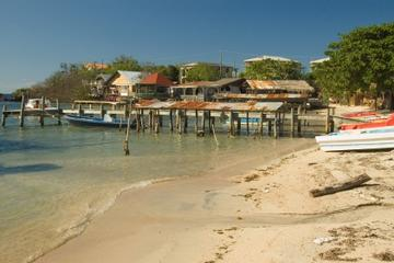 Roatan Shore Excursion: East Island Tour