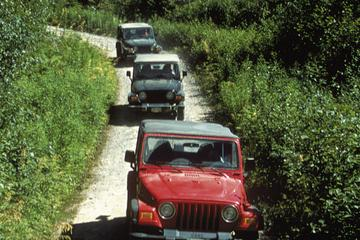 Ketchikan Super Saver: Off-Road Jeep and Canoe Safari Combo