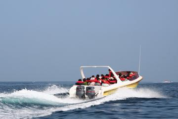 Bermuda Powerboat Round-the-Island Tour Including St George's