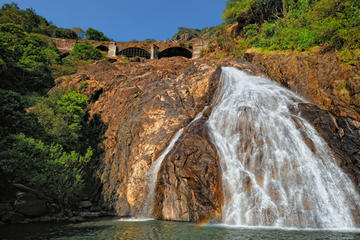 2-Day Private Tour: Jungle Adventure in Mollem National Park Including Dudhsagar Falls and Jeep Safari from Goa