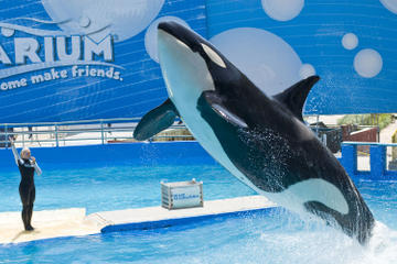 General Admission to the Miami Seaquarium