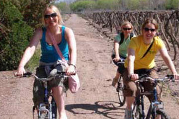 Small-Group Bike Tour in Mendoza Wine Country