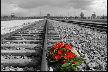 Krakow Super Saver: Auschwitz-Birkenau Half-Day Tour plus Wieliczka Salt Mine Half-Day Tour
