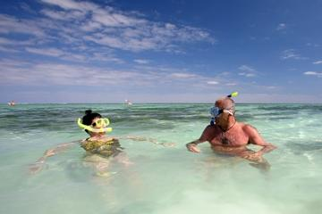 Prickly Pear Island Half-Day Trip by Boat from St John's with Snorkeling