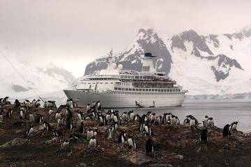 11-Day Antarctica Cruise from Punta Arenas: Antarctic Peninsula, South Shetland and the Antarctic Circle