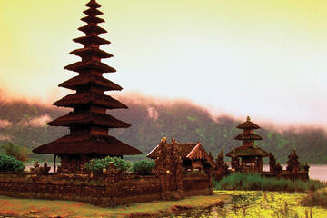 9-Day Best of Bali Tour: Ubud, Sidemen, Mt Batur, Lovina and Bedugul