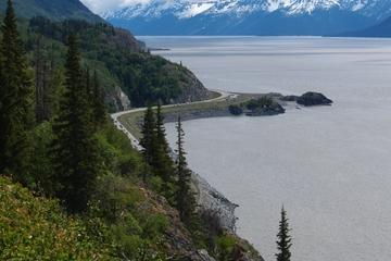 Seward Highway Tour from Anchorage: Turnagain Arm, Mt Alyeska and Optional Glacier Cruise