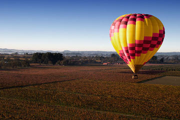 Sonoma Valley Hot Air Balloon Ride with Gourmet Champagne Brunch