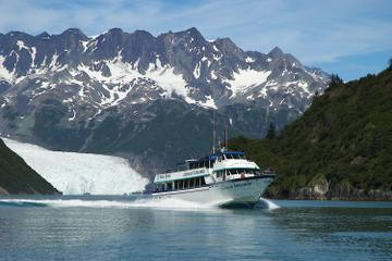 Seward Cruise with Dinner on Fox Island