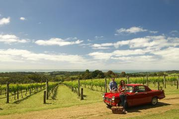 Private Tour: Mornington Peninsula Behind-the-Scenes Gourmet Food and Wine Tasting Experience