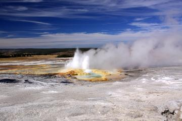 4-Day Yellowstone and Grand Teton National Parks Wildlife Adventure