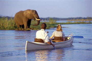Kayak Safari on the Zambezi River with Transport from Livingstone