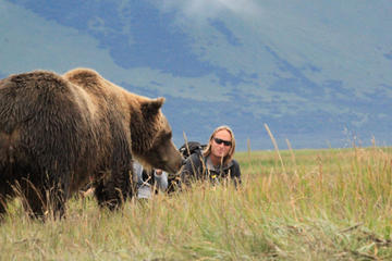 Alaska Bear Country Day Trip to Katmai or Lake Clark by Airplane