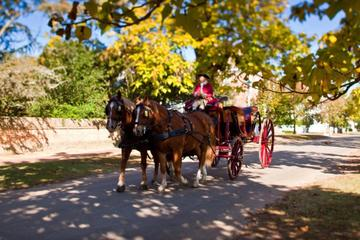 Colonial Williamsburg City Tour