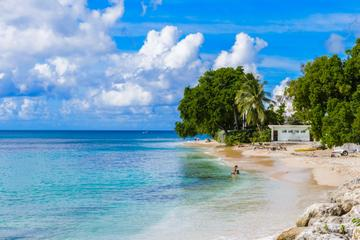 ALL Barbados Tours, Travel & Activities