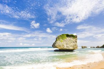Barbados Scenic Tour Including Bathsheba Sunbury Plantation
