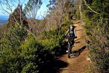 Mountain Bike Tour from Hobart