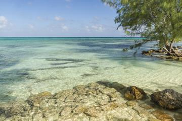 Cayman Islands Tours, Cruises,  Travel & Activities