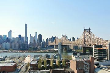 Picture of Long Island City Walking Tour: Queens Cool Uncovered
