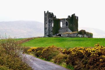 Ring of Kerry Tours, Travel & Activities