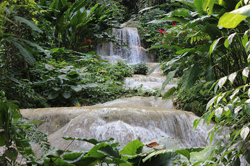 Ocho Rios Sightseeing Garden Tour