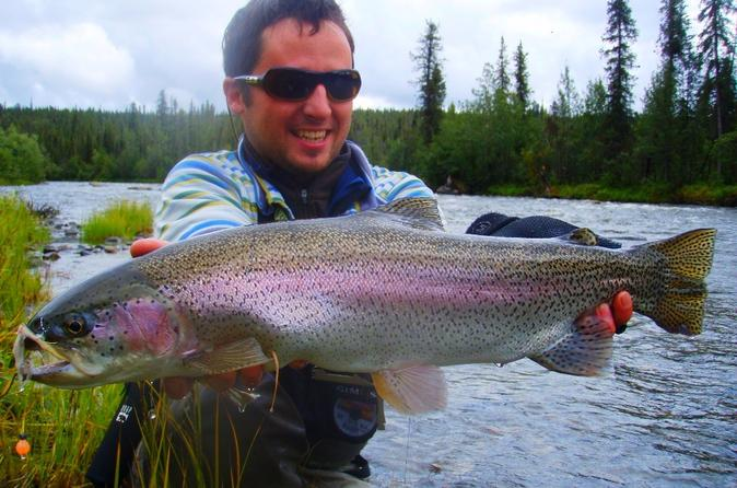 Guided tours in denali the interior usa lonely planet for Fishing in fairbanks alaska