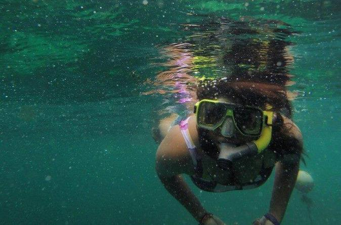 Full-Day Pulau Payar Snorkeling Tour from Langkawi