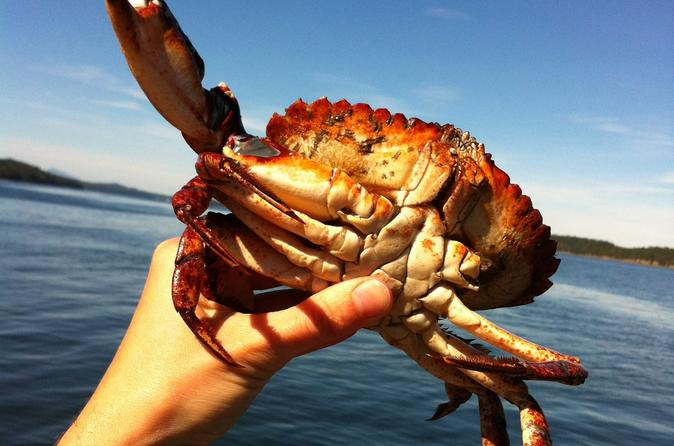 Crab fishing pictures posters news and videos on your for Blue crab fishing
