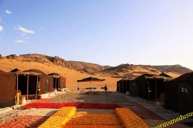Morocco Zagora desert camel ride and night in a luxury camp under stars