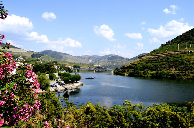 Douro Valley Small-Group Tour with Wine Tasting, Portuguese Lunch and Optional River Cruise