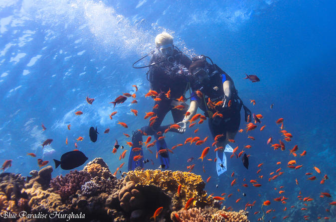 Red Sea Full-Day Introduction to Scuba Diving
