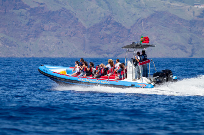 WEST COAST TOUR BY SPEED  BOAT  DOLPHIN and  WHALE WATCHING