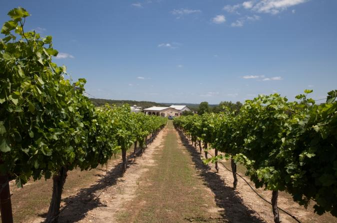Winery Tour and 3-Course Meal with Wine in Marble Falls