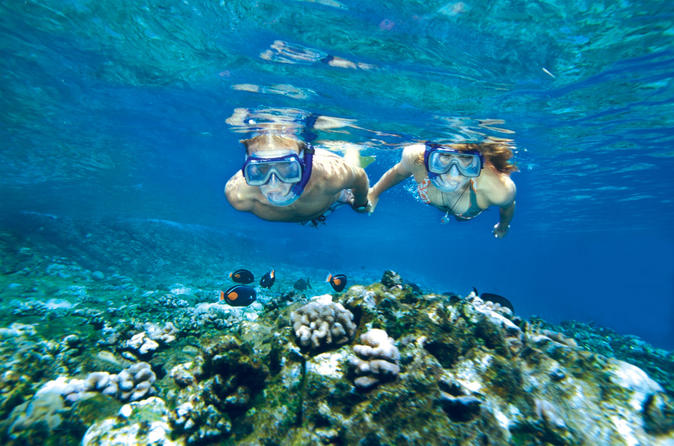 Molokini And Turtle Arches Snorkeling Trip