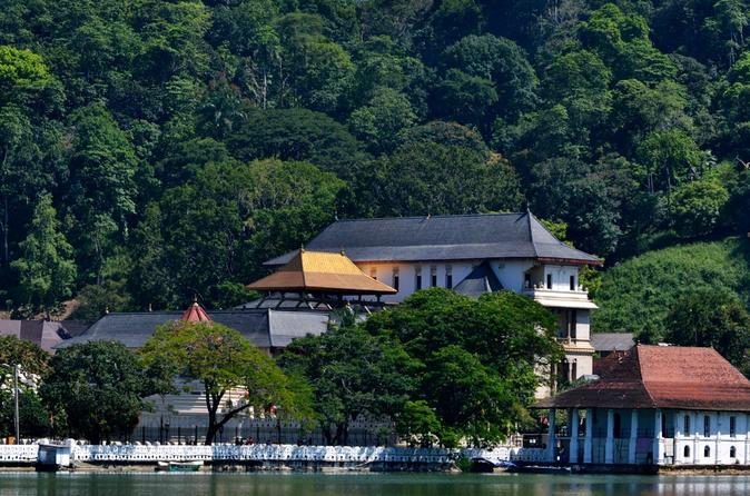 Private Day Trip to Kandy from Bentota