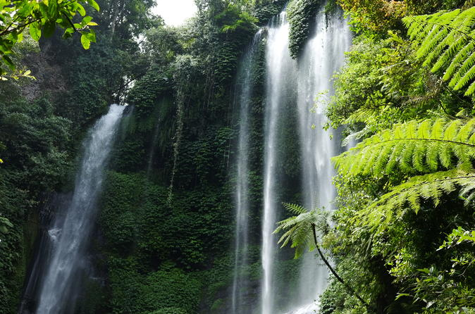 Private Tour: Sekumpul Waterfalls Hiking Tour