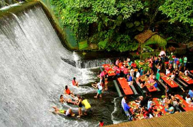 Villa Escudero Plantation Tour with Lunch