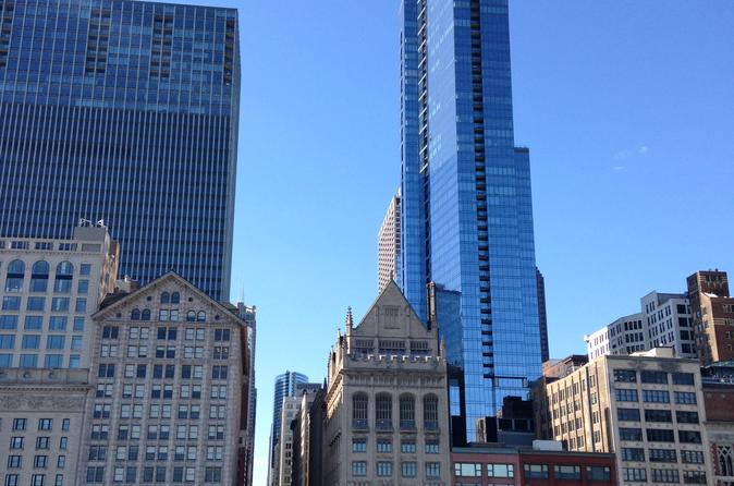 Private Guided Tour of Chicago by Deluxe Mini-Coach for up to 12 guests