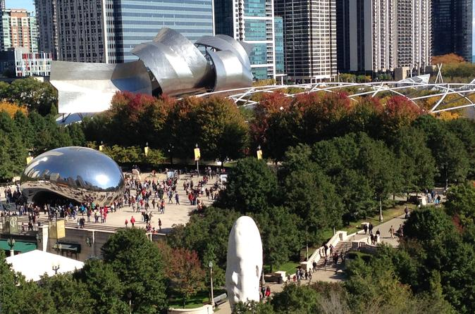 Private Guided Tour of Chicago - Deluxe Coach for 12 - International Languages