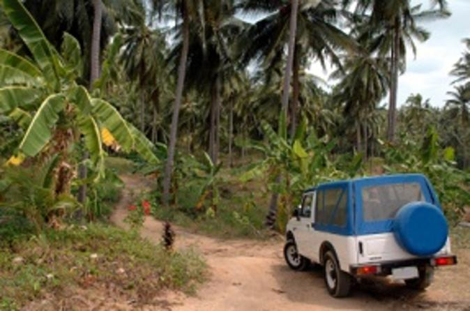 Dominica-shore-excursion-half-day-jeep-safari-in-roseau-47949