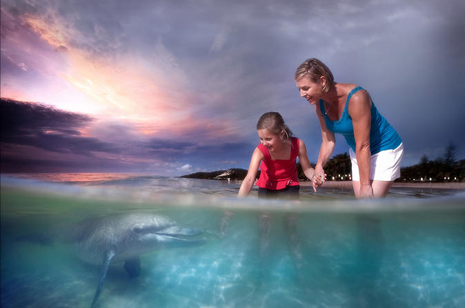 2-day-tangalooma-resort-and-dolphin-feeding-tour-in-brisbane-138570