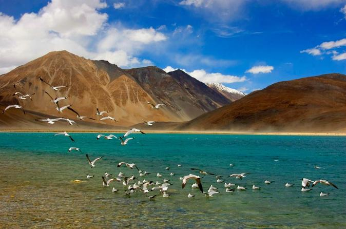 9-Nights-10-Days-Experience-the-adventure-and-life-Full-of-Journeys-at-Leh-and-Ladakh