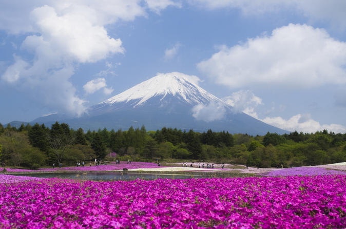 Mt-fuji-day-trip-with-heritage-walking-tour-from-tokyo-in-tokyo-143764