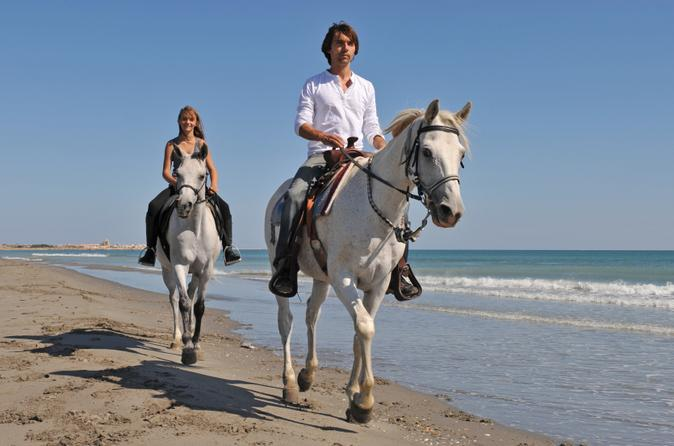 Los-cabos-horseback-riding-in-los-cabos-158702